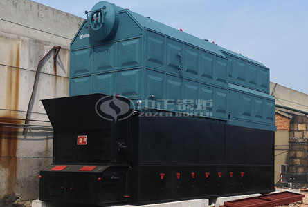 15tph DZL series biomass-fired steam boiler project for textile industry